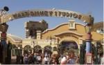 disneyland paris il parco dei divertimenti,disneyland paris,parco dei divertimenti,vacanza a disneyland paris,viaggio a disneyland paris