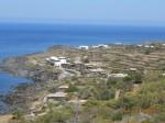 vacanza a pantelleria,viaggio a pantelleria,mare pantelleria,cucina pantesca