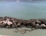 Le mie vacanze in Puglia e nel Salento, Puglia, Salento,Otranto, porta d'Oriente