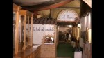 Immagine museo norba2.JPG